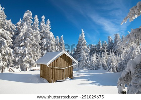 Forester's hut covered with snow in the mountains