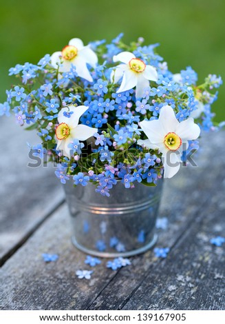 forget-me-not and narcissus flowers on wooden garden table - stock photo