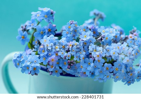 Forget me not flowers bouquet in a blue vase - stock photo