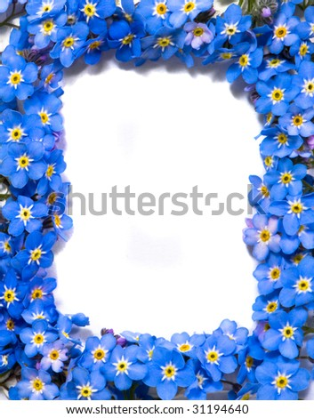 forget-me-not flowers frame - stock photo