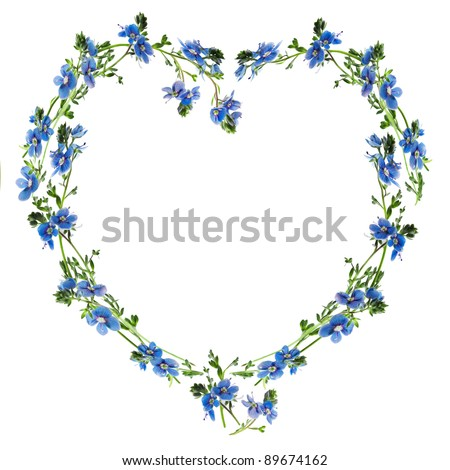 Forget-me-nots made into the heart outline - stock photo