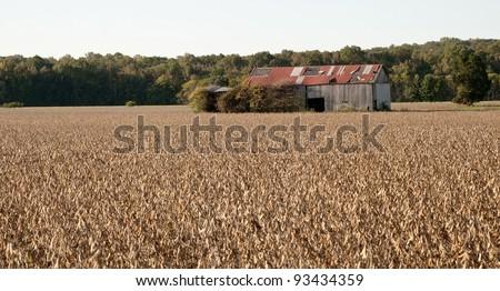 Forgotten barn - stock photo