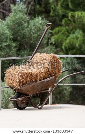 Fork,  hay and wheelbarrow in the barn