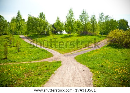 Fork in the road in the park and blooming dandelions. - stock photo