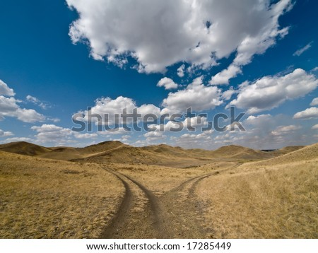 Fork of unmetalled road. Alternative concept - stock photo