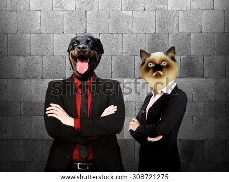 Formal wear business man and woman with dog and cat head - stock photo