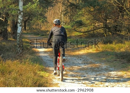Forrest path with bicyclist, fitness, sport on autumn, fall day in belgium. - stock photo