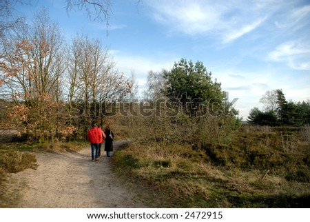 Forrest path with hikers, people on autumn, fall day in belgium. - stock photo