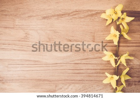 forsythia flowerd twig on a natural wood surafce - copy space - stock photo