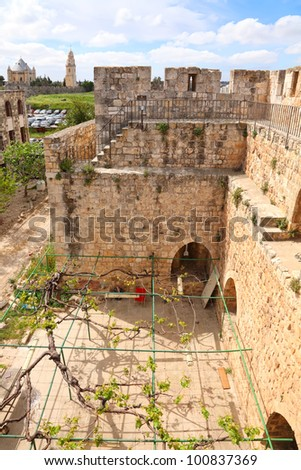 Fortification of the Jerusalem's old city and interior of the Fortress yard  twined a grapevine - stock photo