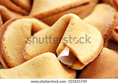 Fortune cookie background.  Macro with shallow dof.  Selective focus on edge of opened cookie with paper strip. - stock photo