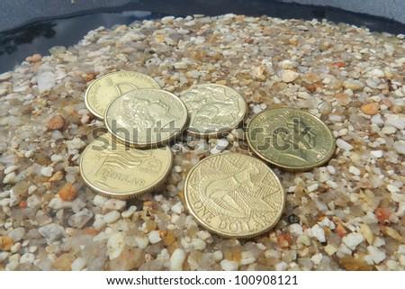 fossicking for Coins, Australian Dollar - stock photo