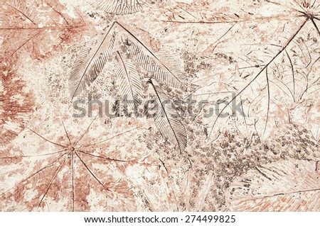 Fossil background, imprints of leaves on stone. - stock photo