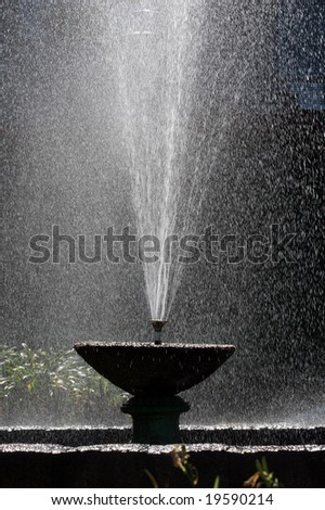 Fountain Of Youth Stock Images Royalty Free Images