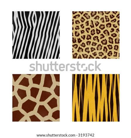 four animal skins patterns - stock photo