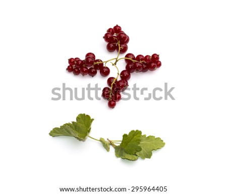 four branches of currant on a white background