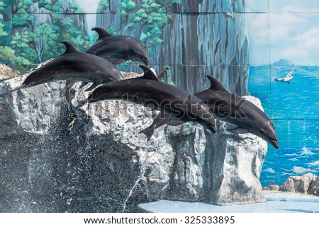 Four dolphins jumped out of the water and hovered in the air against a bright blue painted wall water park - stock photo