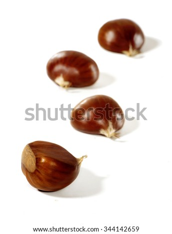 Four fresh shiny chestnuts isolated on a white background. - stock photo