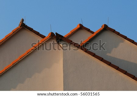 Four gables with red roofs, lightning arresters and a fictile dove at one of them