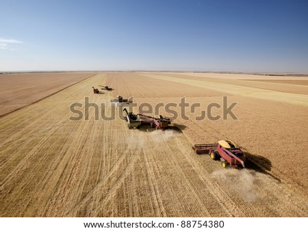 Four harvesters combining in formation in a field on the open prairie - stock photo