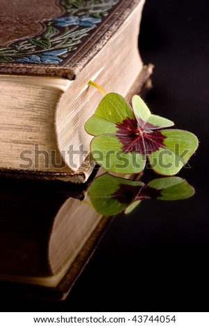 Four leaf clover serving as a bookmarker in an antique book - stock photo
