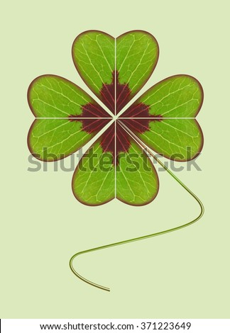 Four-leaf clover. The symbol of wealth, success and love. Happy plant. Geometric leaf on a green light background.