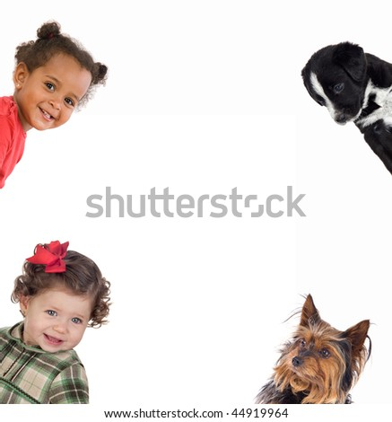 Four little funny: two babies girls and two puppies isolated on a over white background - stock photo