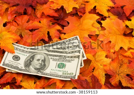 Four one hundred dollar bills sitting on a fall leaf background, money - stock photo