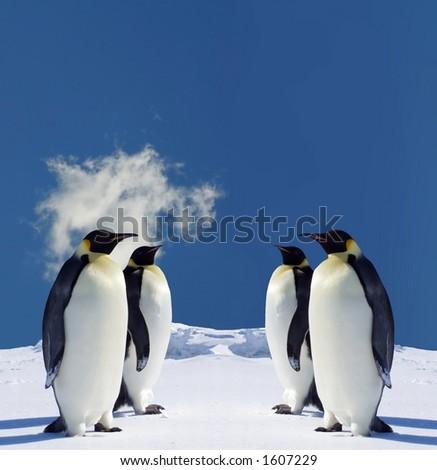 Four Penguins in Antarctica - stock photo