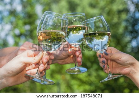 Four people cheering with glasses filled with wine - stock photo