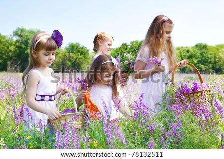 Four preschool girls in white dresses gathering flowers - stock photo