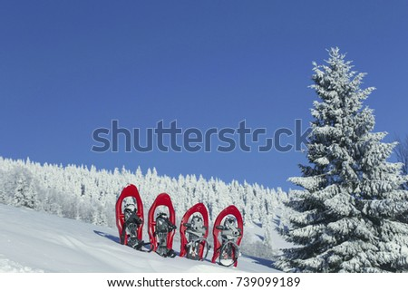 Four red snowshoes stick out in the snow.