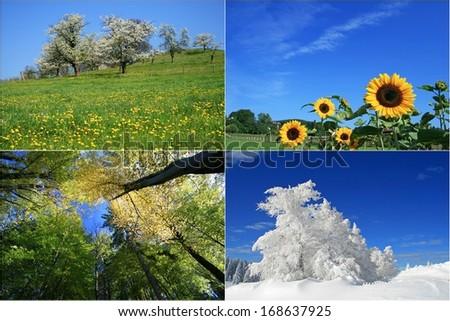 four seasons - stock photo