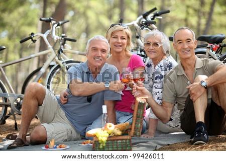 four senior people toasting at picnic - stock photo