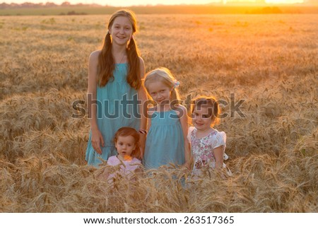 four smiling little girls in a wheat field - stock photo