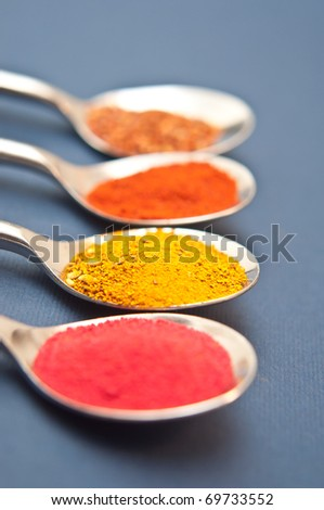 Four spices presented in teaspoons over dark blue background - stock photo