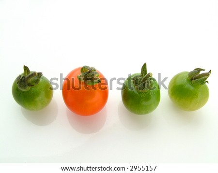 Four tomatoes in a row
