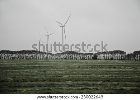 Four windmills for electricity production in Denmark