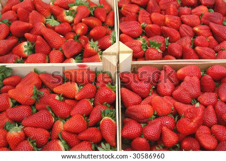 Four wooden boxes with strawberries, provence, france