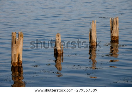 Four wooden pilings at sundown - stock photo