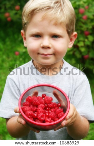 Four year old boy showing freshly picked raspberries and red currants with raspberry plants in the background. Shallow DOF with focus on fruits. - stock photo