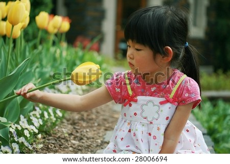 Four-year-old girl looks at yellow tulip - stock photo