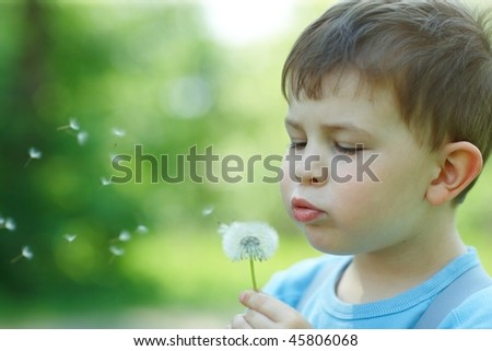 Four years old child blowing Dandelion seed outdoor in spring garden. - stock photo