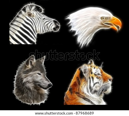 Fractal animal pack (tiger, hawk, wolf, zebra) - stock photo