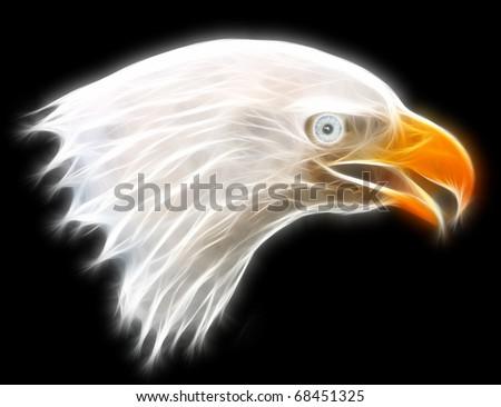 Fractal Eagle illustration symbol of America - stock photo