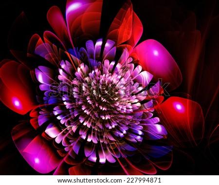 fractal fantasy flower - stock photo