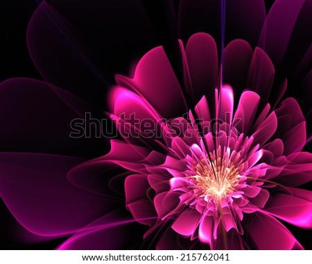 fractal fantasy pink flower - stock photo