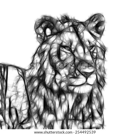 Fractal illustration of an African Lion - stock photo