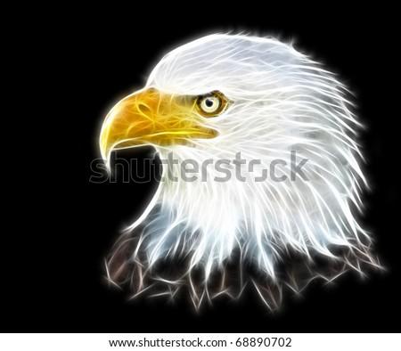 Fractal illustration of an eagle symbol of america - stock photo