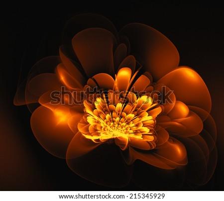 fractal orange fantasy flower - stock photo